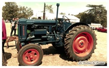 Des tracteurs si bien restaurés que l'on pourrait penser qu'ils sortent d'usine !