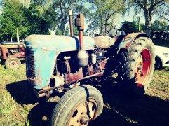 Plutôt rare ce tracteur Famulus !